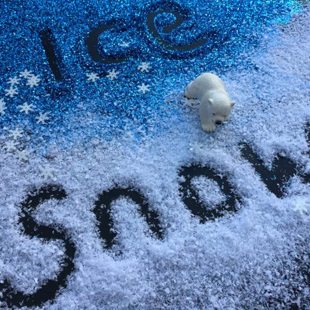 snow winter theme