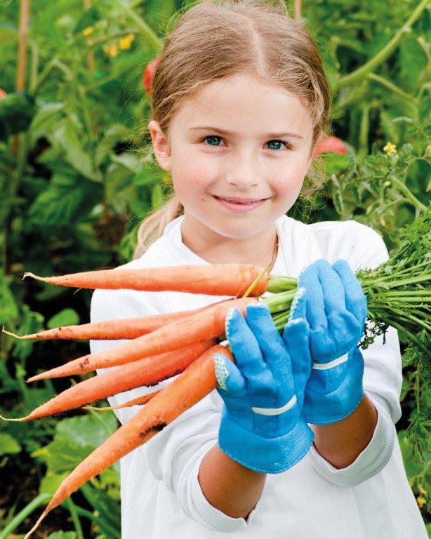Growing Vegetables at School