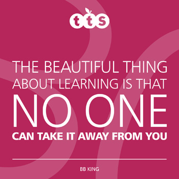 The beautiful thing about learning is that no one can take it away from you - BB King