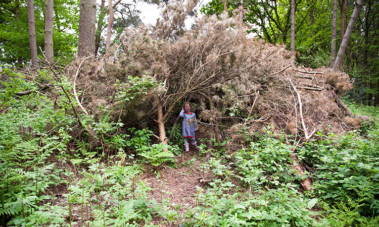 Woodland Den outdoor play