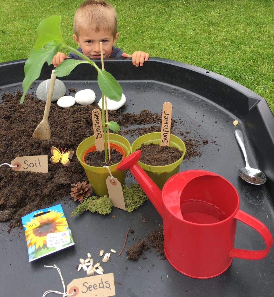 planting seeds in the tuff spot tray by Lottie Makes