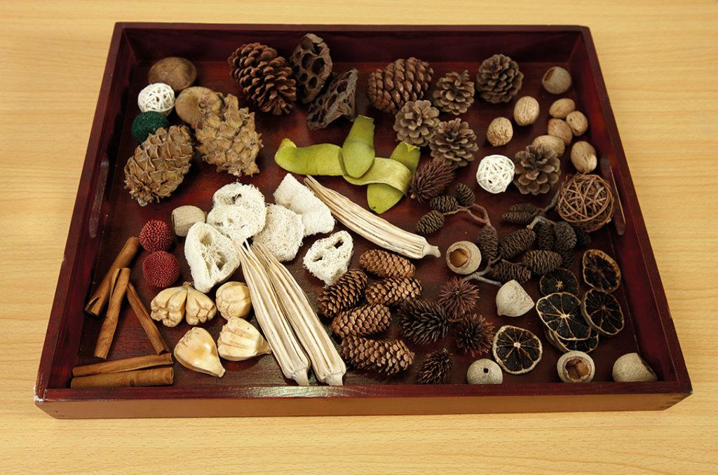 Natural sorting tray