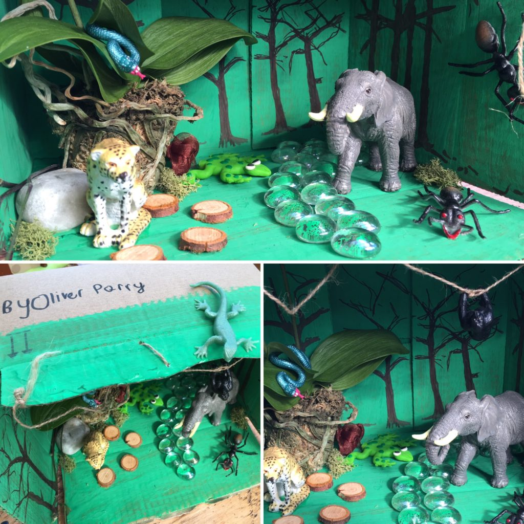 Classroom Rainforest Ideas ~ Creating the world of a book in story box tts inspiration