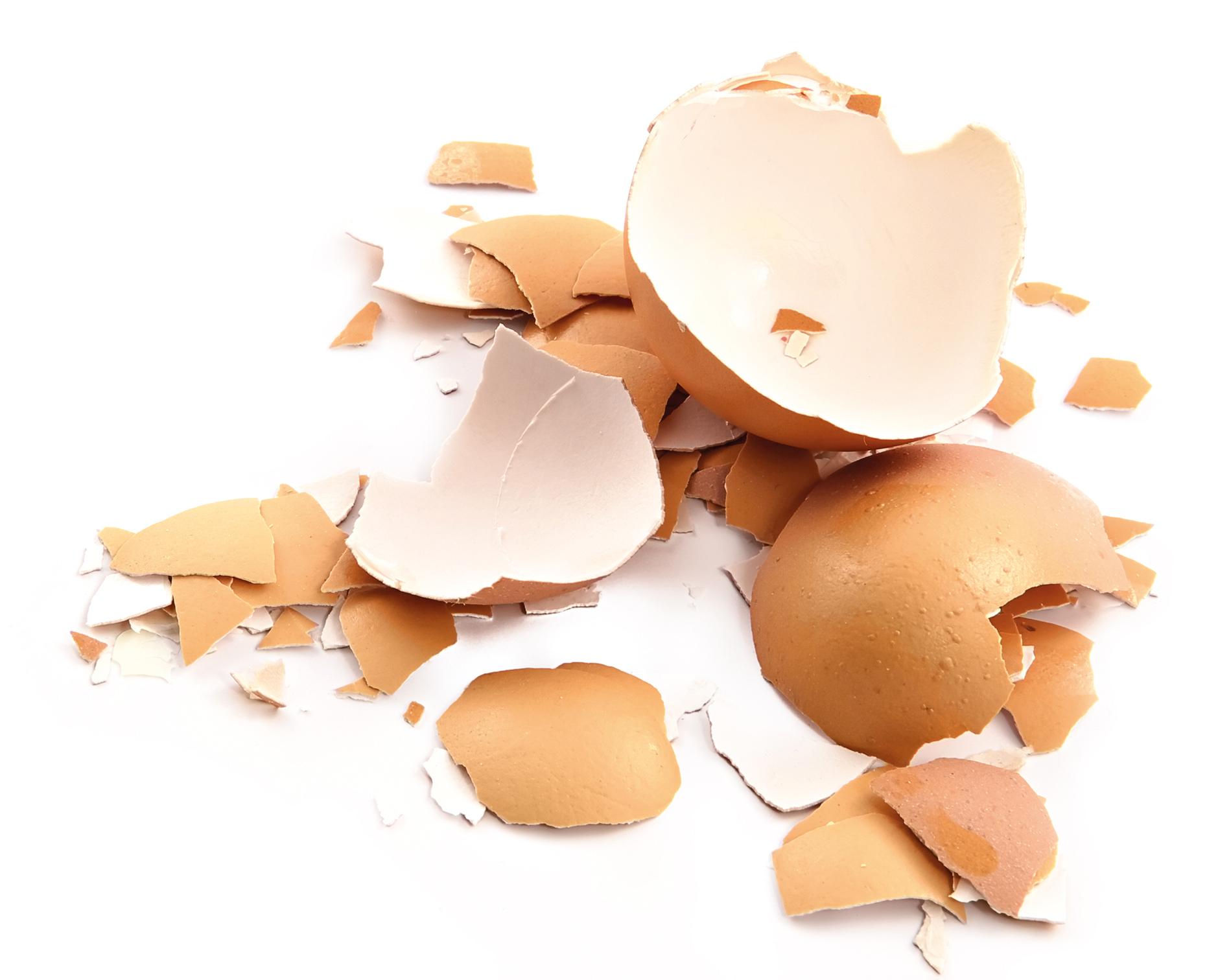 Как измельчить яичную скорлупу в домашних условиях