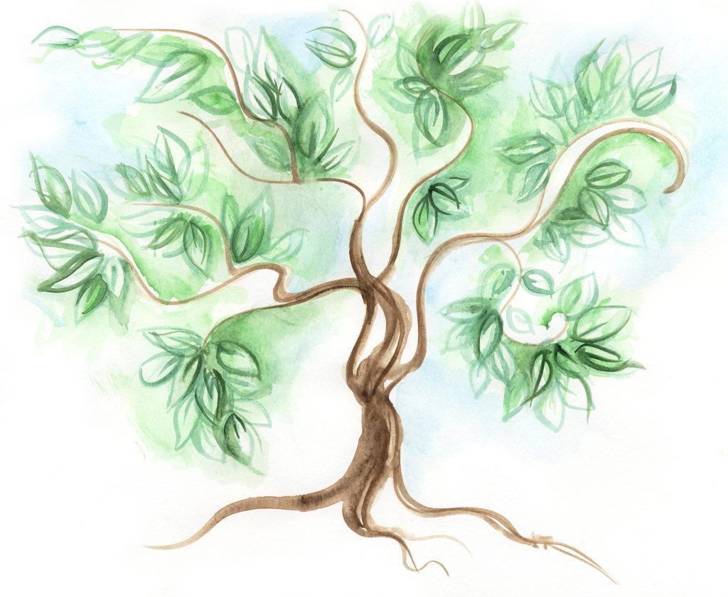 meditation-tree