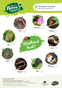 eden learning outdoors minibeasts