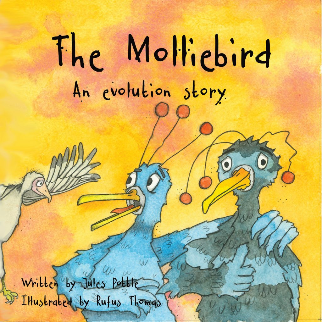 The Molliebird - Science Through Stories